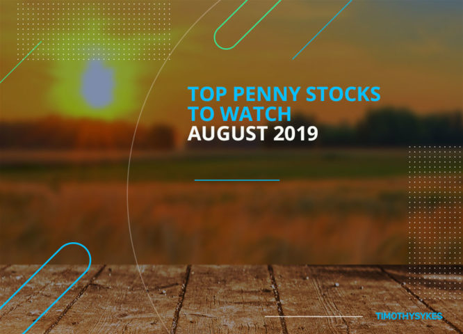 Before you dig into the list of the top Penny Stock to Watch 2019